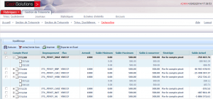 Cash pooling screenshot